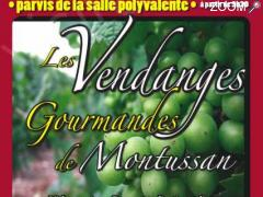 photo de LES 2emes VENDANGES GOURMANDES DE MONTUSSAN
