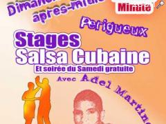 photo de Stages de Salsa Cubaine