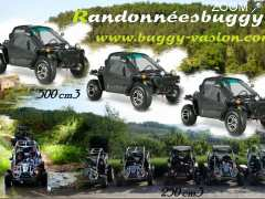 photo de Buggy Vasion